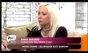 Anna Jakubik Fluffy Coons on TV